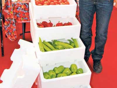 Sebze-meyveye straforlu kasalar