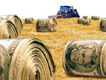 tarımsal destek