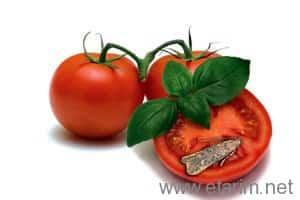 domates güvesi