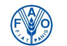 FAO İstatistik
