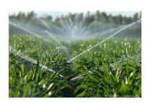 tarımda suyun kullanımı