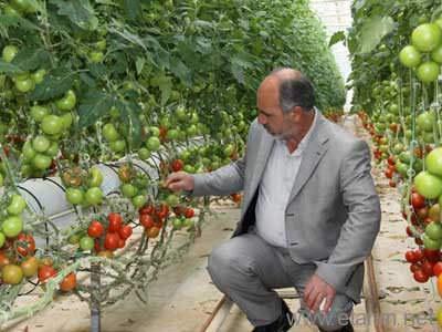 Çubuk Turşusu Kooperatifi Başkanı Hasan Hüseyin Benli