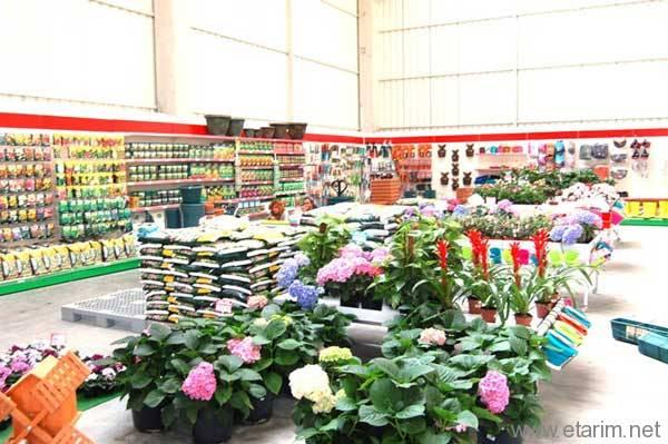 Tarım Market