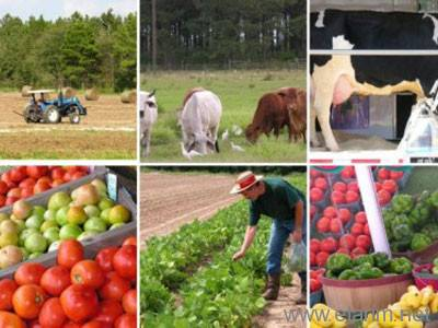 tarım takvimi