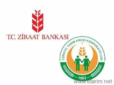 Ziraat Bankası ve Tarım Kredi Kooperatifleri