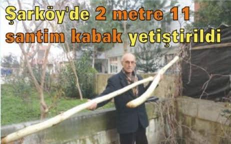 Şarköy'de 2 Metrelik Kabak Görenleri Şaşırtıyor