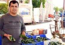 salatalık üreticisi