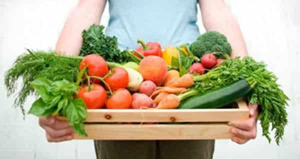 Organik Tarım Destek