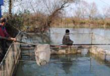 Manavgat'ta suda yaşayan canlıların yaşam alanları koruma altına alındı