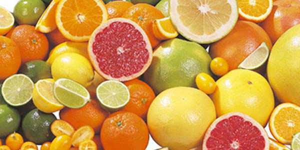 Turunçgil (Citrus) Yetiştiriciligi