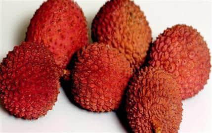 Liçi Meyvesini ,( L. chinensis),tropikal,meyve,yetiştiricilik