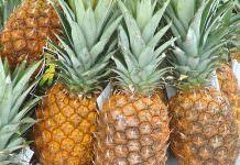 ananas meyvesi