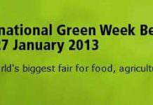 Uluslararası Berlin Yeşil Hafta (IGW)