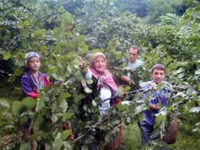 çiftçi,destek,üretim