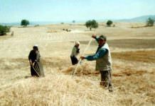 Bakanlıktan çiftçi borçlarına açıklama