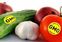 Genetiği Değiştirilmiş Organizmalar 1