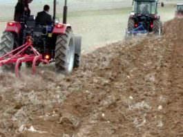 Tarım arazileri miras yoluyla bölünmeyecek