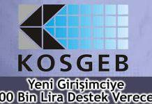 KOSGEB, girişimciye 100 bin lira destek veriyor