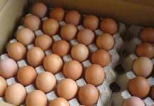 Yumurta satışına AB ayarı