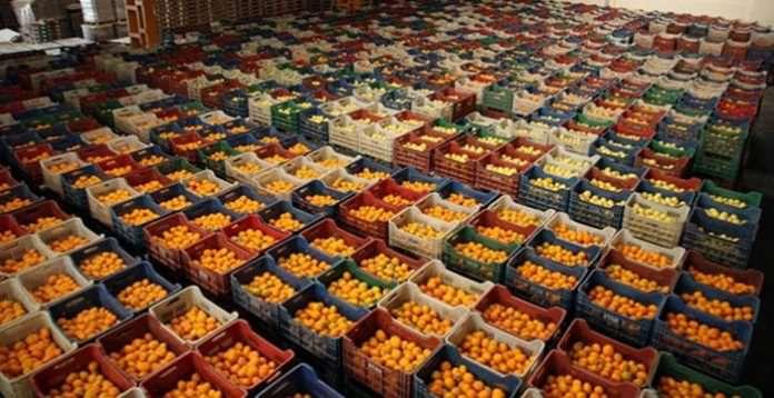 Rus ambargosu kalktı, sebze meyve ihracatı yüzde 30 arttı