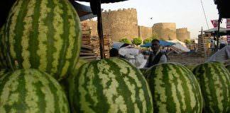 O ülke Diyarbakır karpuzunu Diyarbakır'a satıyor!