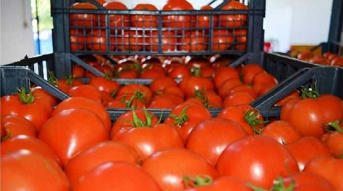Irak da Türkiye'den domates almayacak!