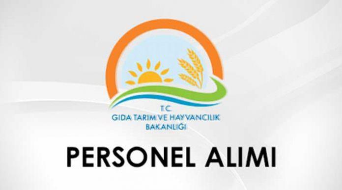 Bakan Çelik'ten personel alımı konusunda müjdeli haber: 2700 personel alınacak