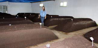 Bir metrekarelik kutudan 6 bin metrekarelik tesise