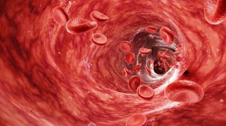 İnsan Vücudu İle İlgili Öğrendikçe Şaşıracağınız 21 Gerçek!
