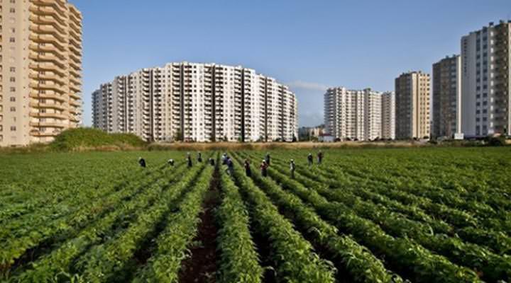 TZOB: 26 yılda 4 milyon hektar tarım arazisi yok oldu