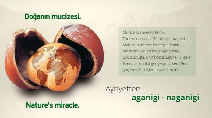 Tanıtım Grubu Türkiye imajını yeniden kazandıracak
