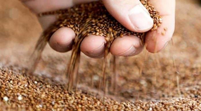 Tarımda yeni borsa dönemi başlıyor
