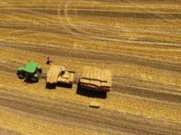Tarım alanlarının yüzde 8,2'sini kaybettik