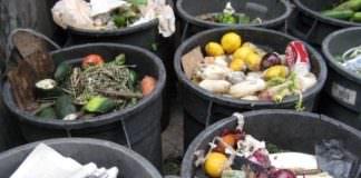 AB ve FAO gıda israfına karşı birleşti!