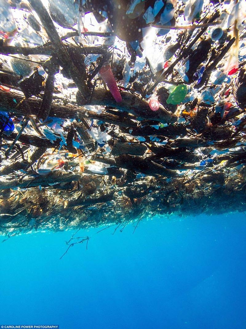 Karayip Denizi'nde Şoke Eden Plastik Çöpler