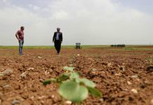 Yatçılara mazot 1,5 TL çiftçiye neden 4,5 TL?