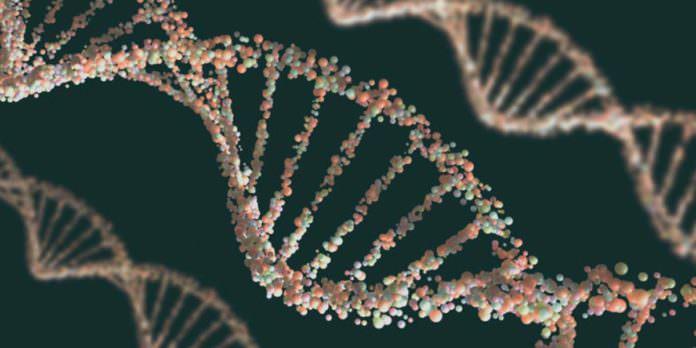 Bilim İnsanları İlk Kez Bir İnsanın DNA'sını Düzenleyecek