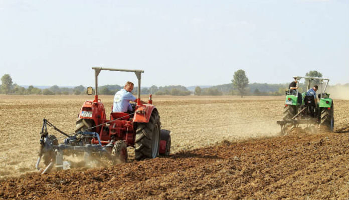 Ekonomi Çiftçiyi Vurdu : Kredilere İmkan Kalmadı