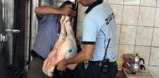 Tarsus'ta kaçak et operasyonu: Mezbahane mührünü patatesle taklit etmişler