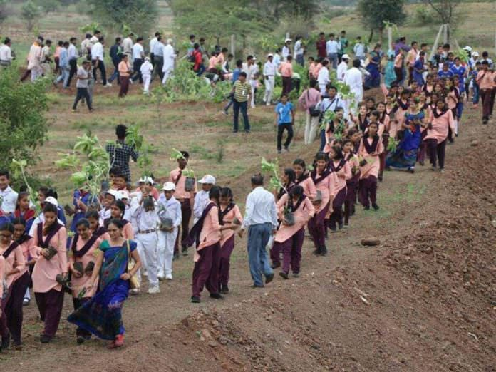 Hindistan'da çevre rekoru; 12 saatte 66 milyon fidan dikildi