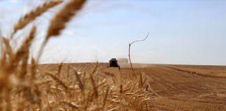 """""""Tarım, Ormancılık, İstihdam ve Kırsal Kalkınma"""" raporu"""