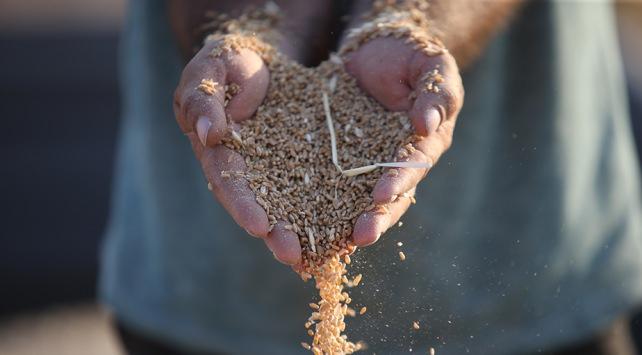 Üniversite mezunu genç çiftçilere 100 bin lira hibenin ayrıntıları