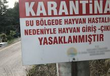 İzmir'de 20 mahalle 'veba' şüphesi ile karantinaya alındı