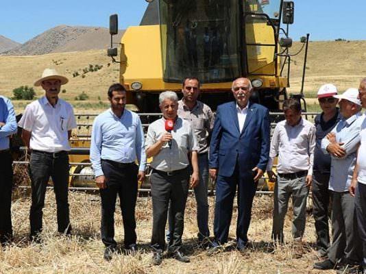 Elazığ'da hububat hasadı devam ediyor.