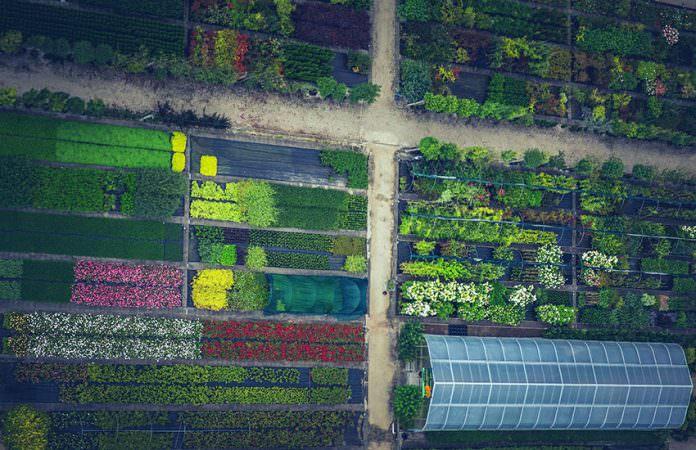 Çiçek ve fidan üretimi ile 120 milyon liralık katkı sağlanacak