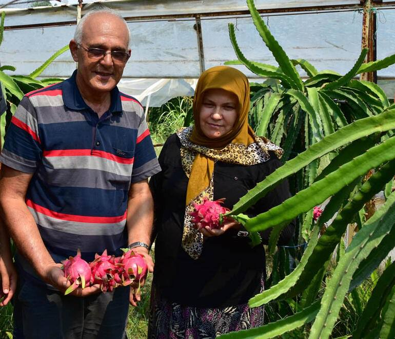 40 yıldır domates ekiyordu! Bıraktı ve bölgenin ilkini gerçekleştirdi