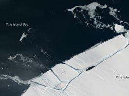 Antarktika Buz Levhası'nda 20 Kilometrelik Dev Bir Çatlak Görüntülendi