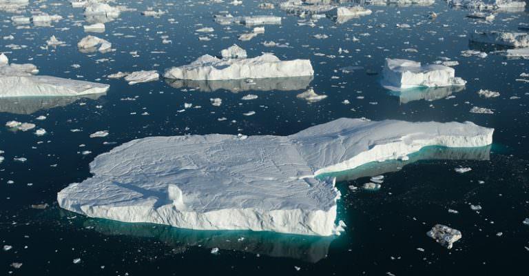 11 Binden Fazla Bilim İnsanı, İklim Değişikliğinin Hepimizi Öldüreceğini Söyledi