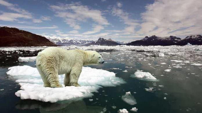 Tarihte bilinen en sıcak 2. yıl 2019 oldu