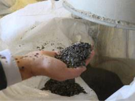 Vermikülit Minerali, Sivas'tan Dünyaya Satılıyor